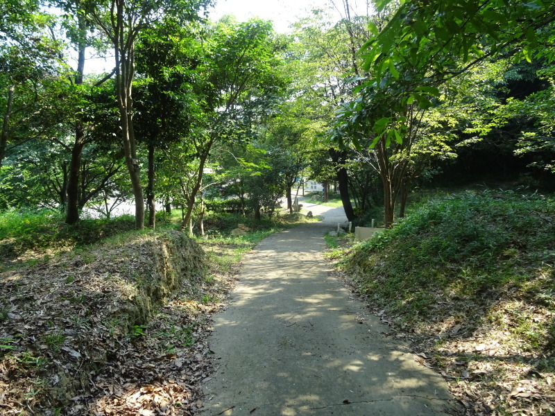 平成27年8月度うみべの森を育てる会運営委員会_c0108460_15432853.jpg