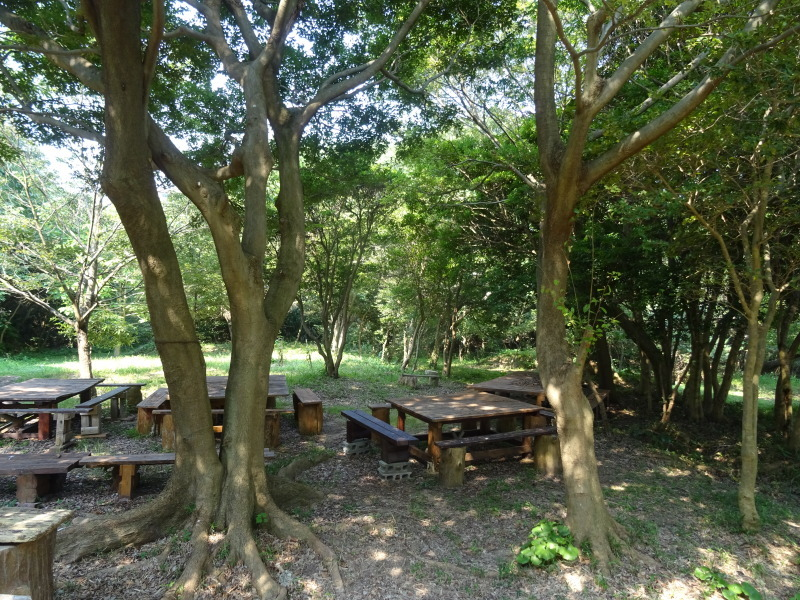 平成27年8月度うみべの森を育てる会運営委員会_c0108460_15433067.jpg