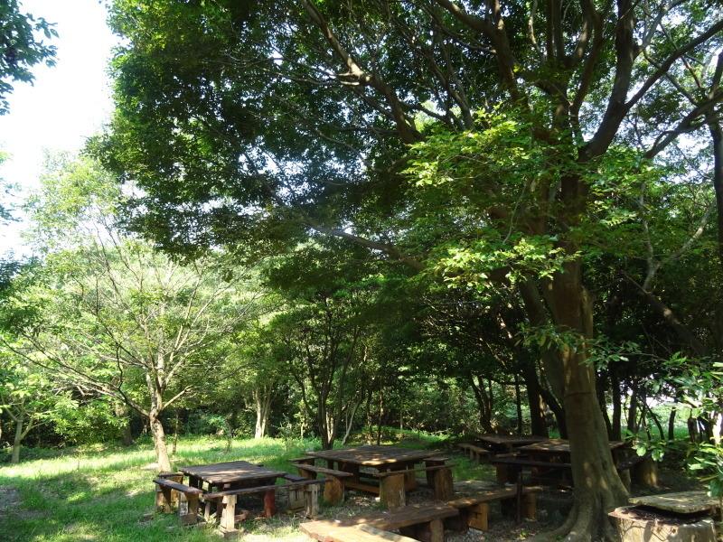 平成27年8月度うみべの森を育てる会運営委員会_c0108460_15433369.jpg