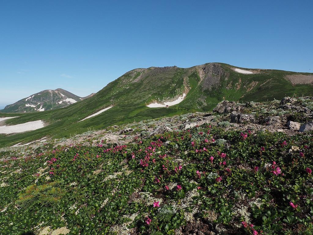 大雪山3色(緑岳、白雲岳、赤岳)登山、8月3日-速報版-_f0138096_19415673.jpg