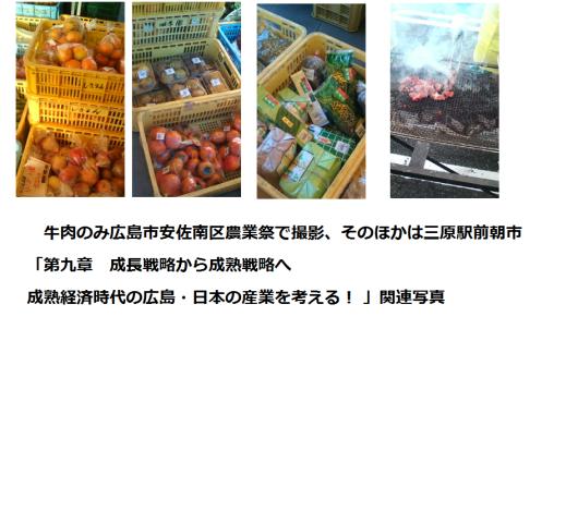 電子書籍「広島瀬戸内新聞: エコでフェアな世界をヒロシマから」発売!_e0094315_14541319.png