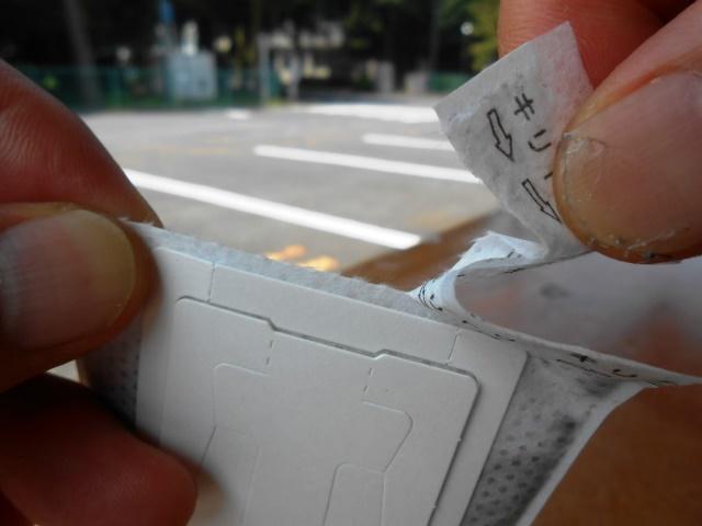 日本の夏 アイスキリマンジェロの夏 _b0136223_9522830.jpg