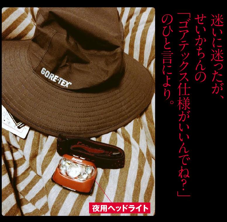 c0354952_20593232.jpg