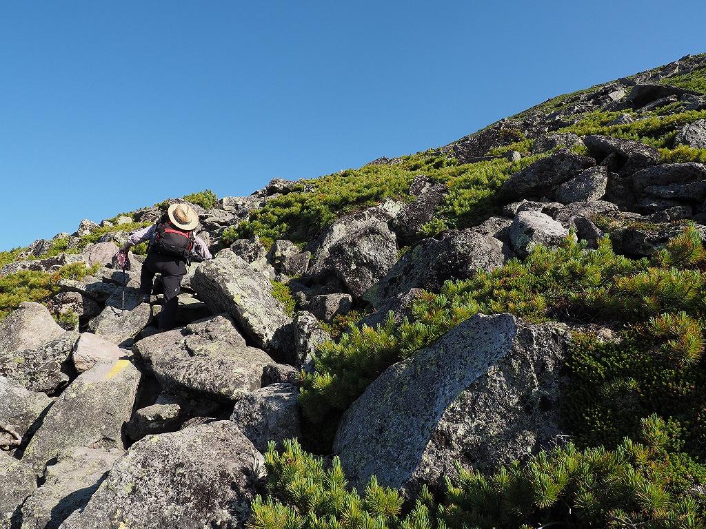 大雪3色登山、8月3日-緑岳編-_f0138096_11405075.jpg