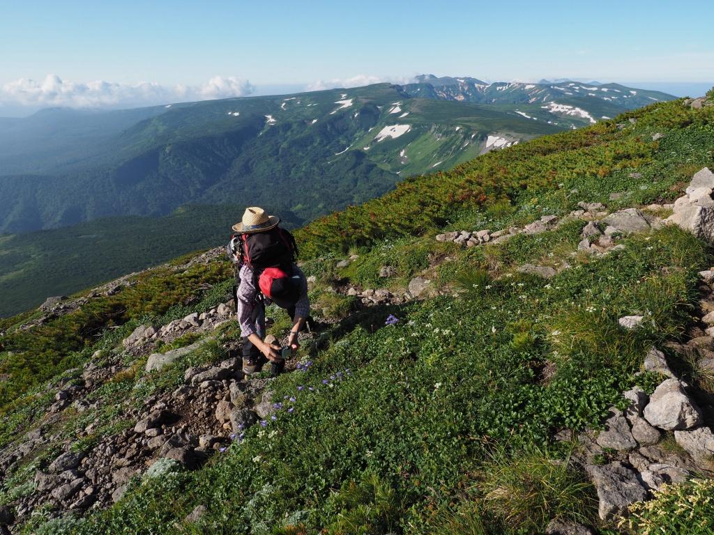 大雪3色登山、8月3日-緑岳編-_f0138096_11405778.jpg