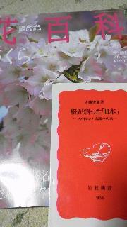社会学 「桜」_c0161301_25660.jpg