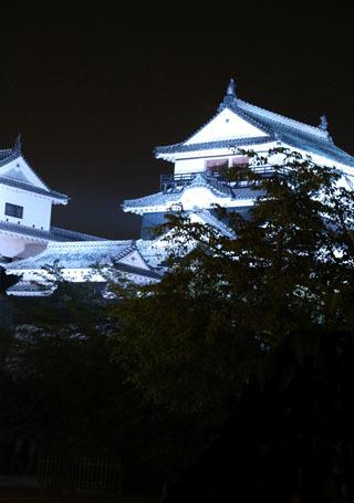 ステーキと松山城ライトup_a0264538_08525425.jpg