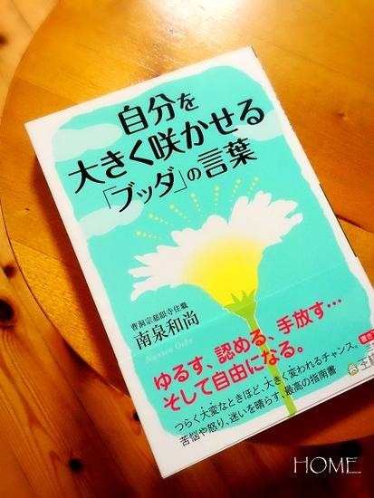 ブッダと桜井さんと  _c0199544_22161814.jpg