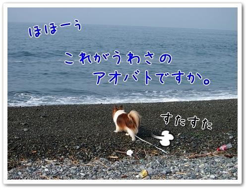 d0013149_1463843.jpg