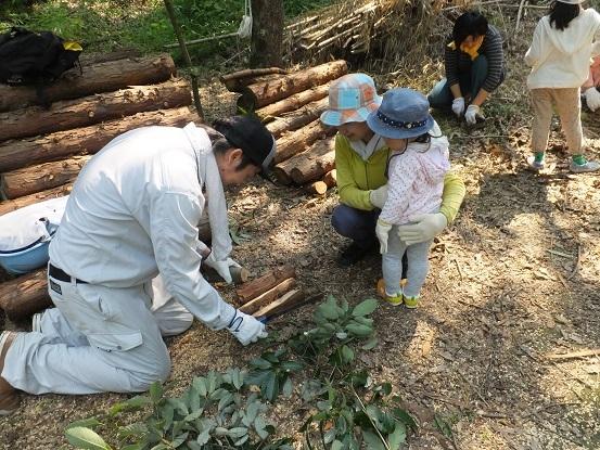 今年から始めた夏休み特別企画「竹取物語」_e0272869_22083999.jpg