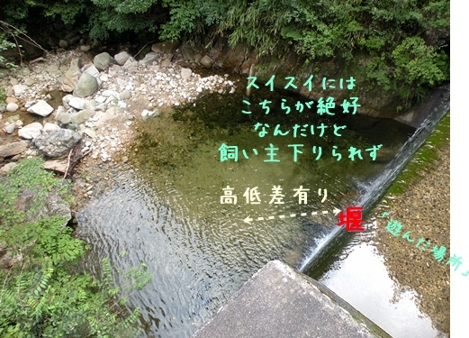 f0176499_00500115.jpg