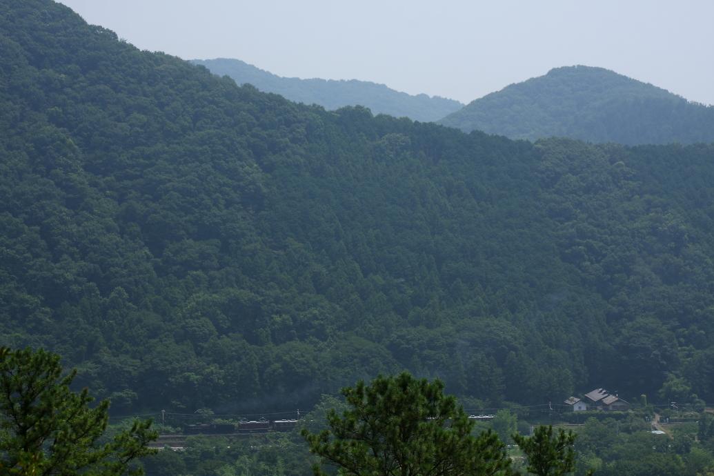 暑苦しい緑の山が重なる - 2015年盛夏・秩父 -  _b0190710_656673.jpg
