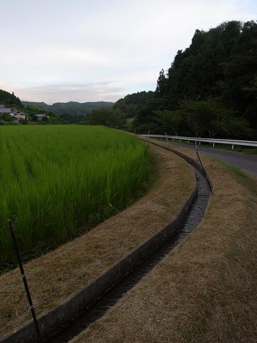 朝の散歩@瑞浪_b0036636_18143417.jpg