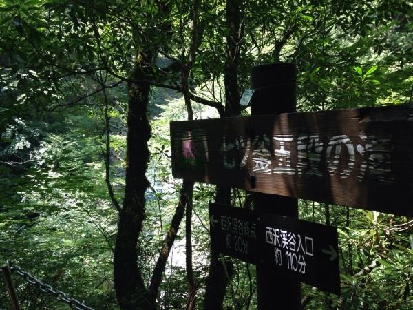 ハイキング(西沢渓谷)_b0219170_13311698.jpg