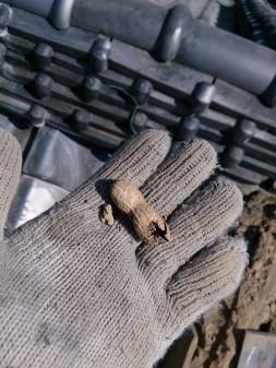 板橋区の徳丸で、屋根修理工事_c0223192_17303588.jpg