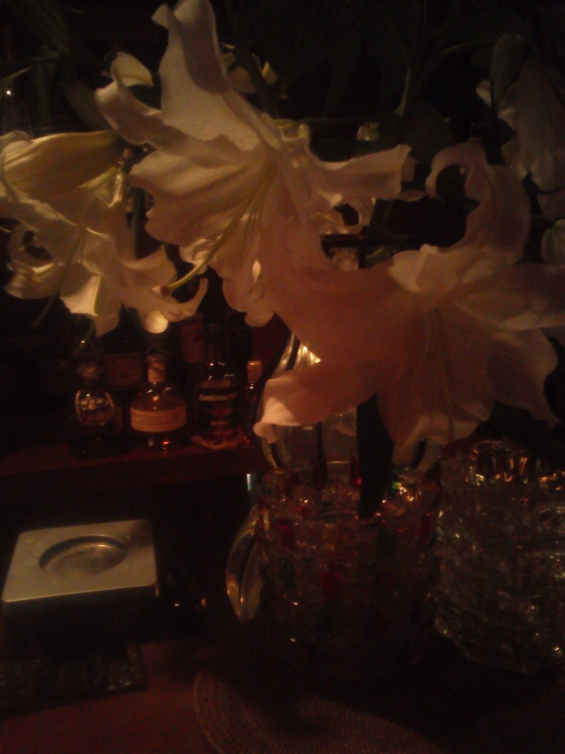 銚子でカウンターにカサブランカが飾られたバーと言えば、此処です。_c0225997_15528.jpg