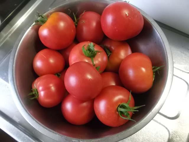 我が家のトマトで冷たいパスタ_f0019498_17245171.jpg