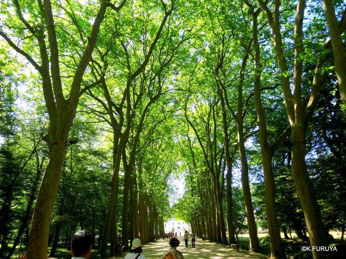 フランス周遊の旅 19 シュノンソー城_a0092659_23533211.jpg