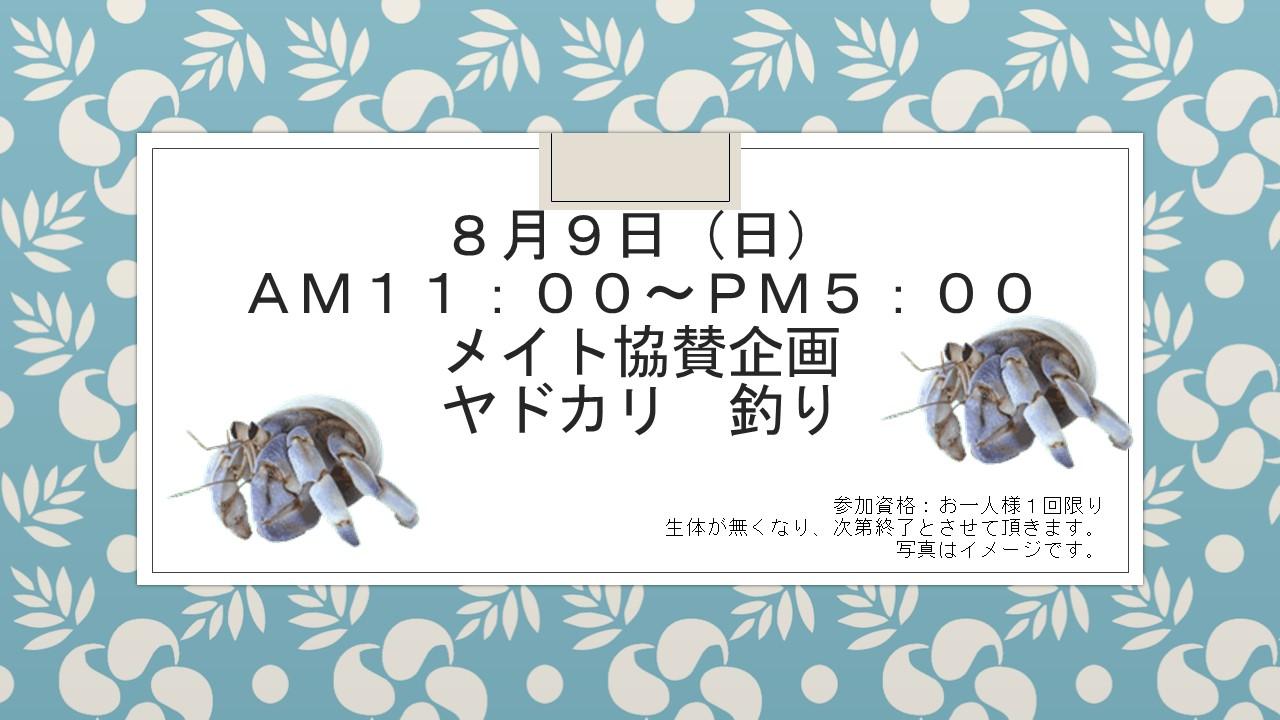 150807 花金セール&イベント告知_e0181866_957070.jpg