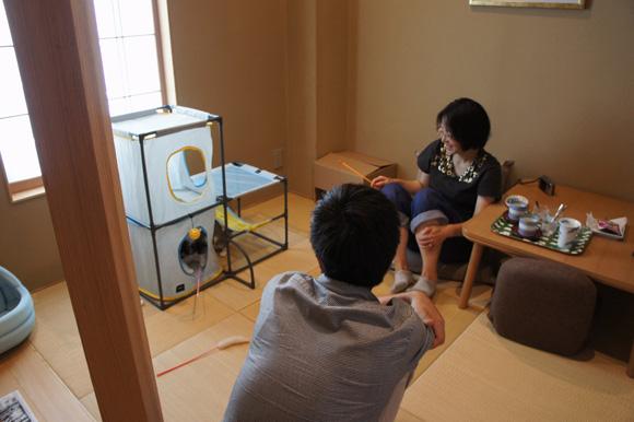 猫カフェ営業中&誕生日_f0163195_18492274.jpg