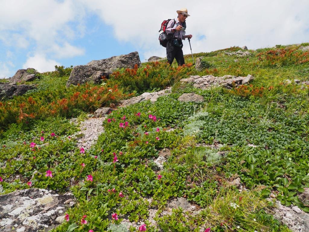 大雪3色登山、8月3日-2度目の緑岳編-_f0138096_1138353.jpg
