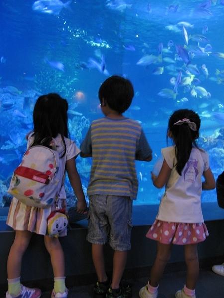 孫たちと水族館へ!_f0129726_22332126.jpg