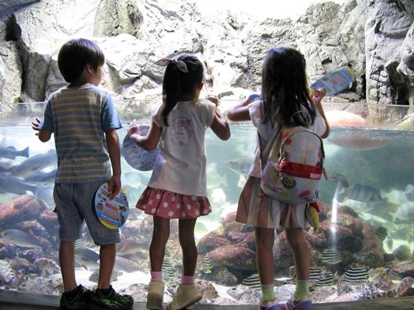 孫たちと水族館へ!_f0129726_22411274.jpg