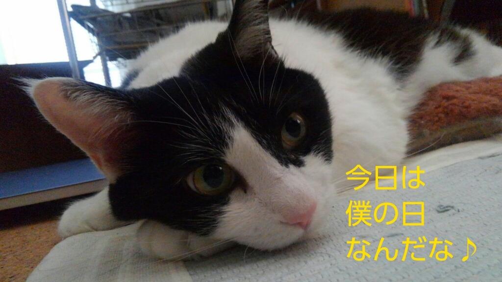 c0181639_20112249.jpg