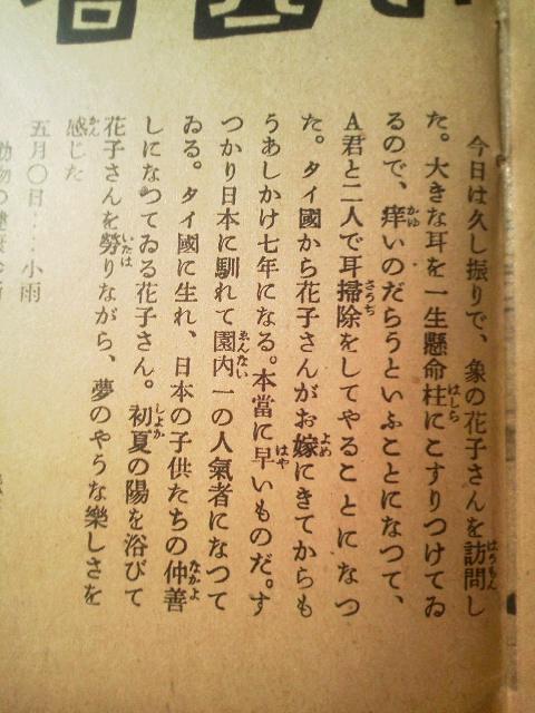ぞうの花子さん(寫眞週報より)_e0350308_7341155.jpg