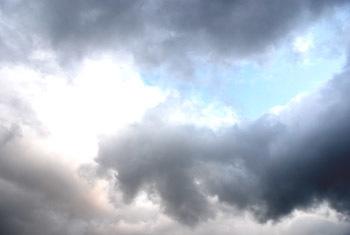 雷と犬たち_e0103024_00503952.jpg
