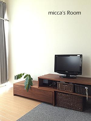 リビングエリアの配置替えと整理 寝室の植物_b0245038_11461256.jpg