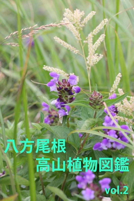 b0144049_1553456.jpg