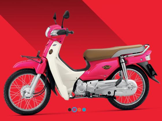 タイバイクにもバイクザシートは人気です_e0114857_20252759.jpg
