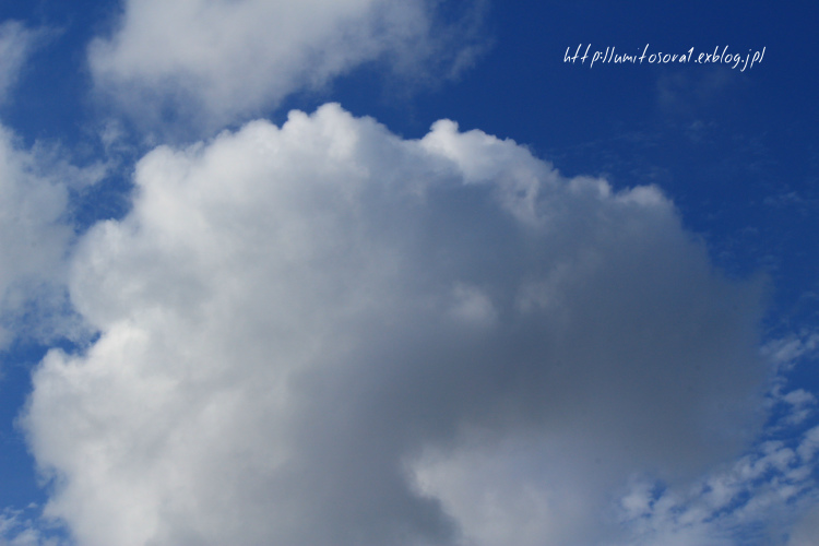 空のドーナッツ_b0324291_14471603.jpg