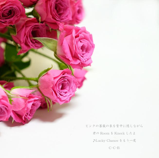 c0101341_1742810.jpg
