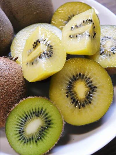 水源キウイ 11月中旬からの収穫に向け、しっかりと手をかけ育てます!キウイフルーツは冬の果物です!_a0254656_17544238.jpg
