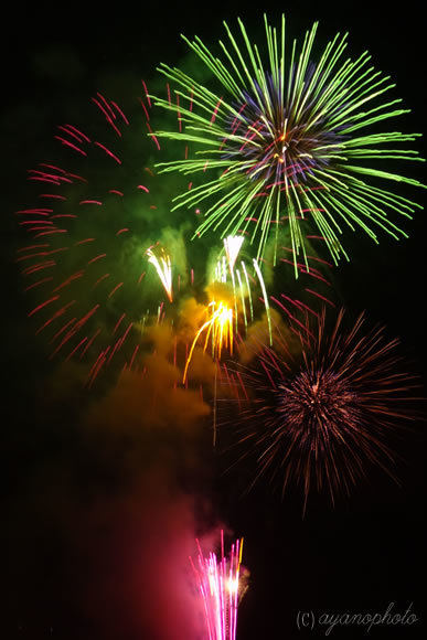第65回高知市納涼花火大会の打ち上げ花火