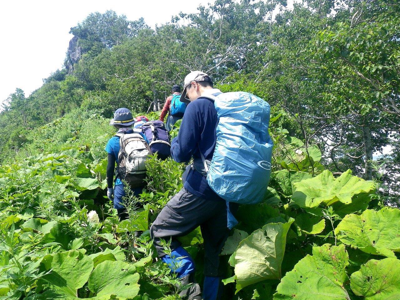 恵庭岳西峰と本峰、8月8日-同行者からの写真-_f0138096_14435337.jpg