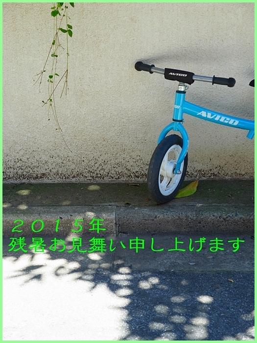 b0148920_1837858.jpg