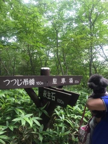 那須高原へ*続き_f0167026_11052803.jpg