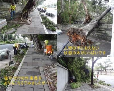 台湾旅行は台風接近のスタートで始まり 最後も台風で大混乱で終わりました_a0084343_17310191.jpg