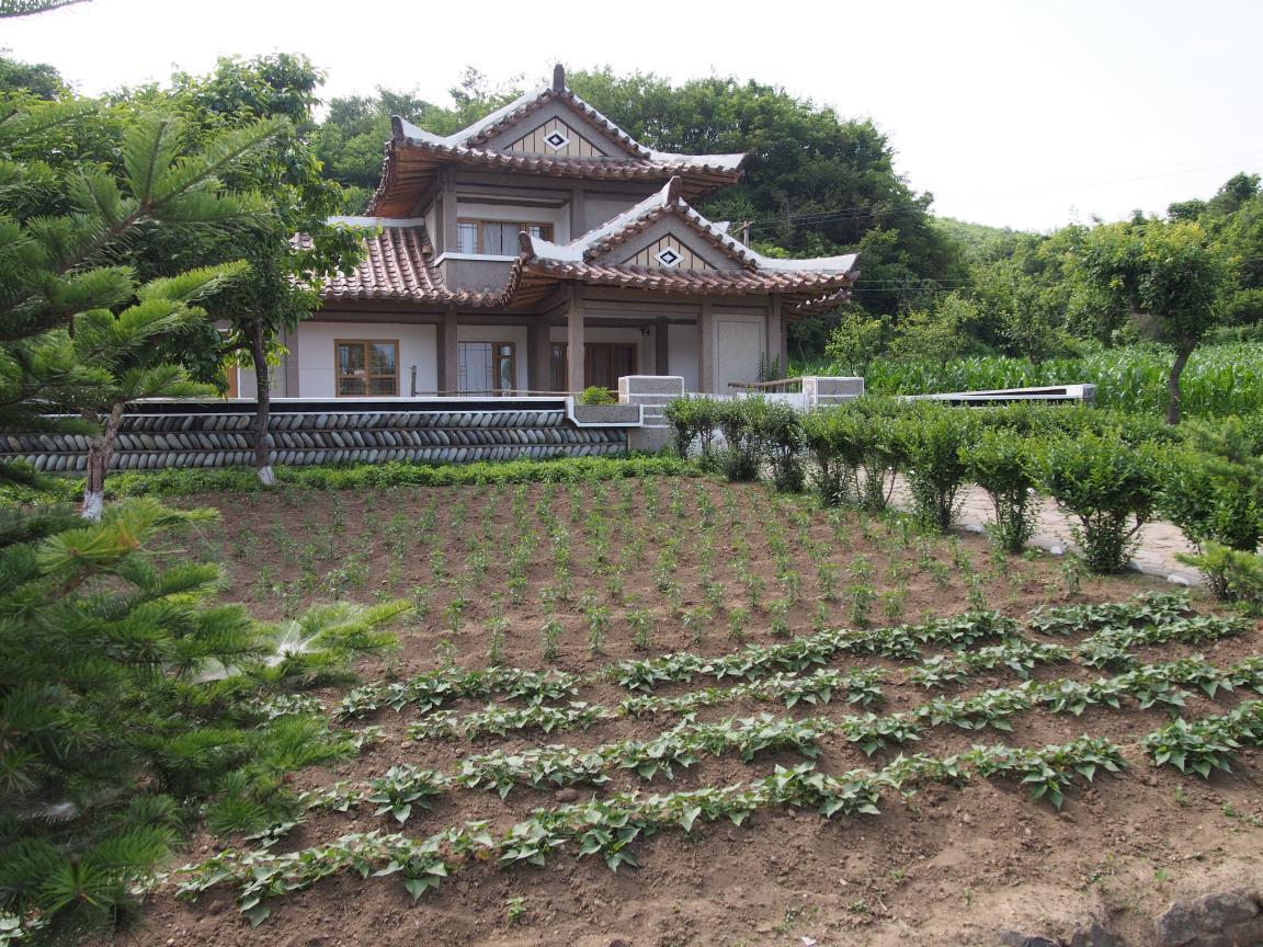 朝鮮でホームステイ その奇妙な世界_b0235153_16375057.jpg