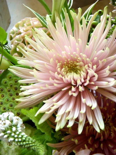 ご注文のお花たち。。。_a0229658_716034.jpg