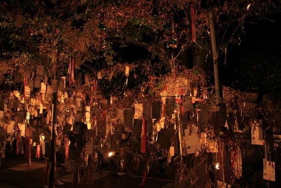 2015年 京の七夕 堀川会場_d0202264_1393133.jpg