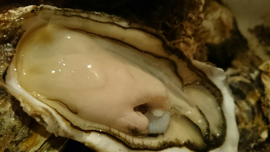 岩手から牡蛎到着!_f0187266_17412047.jpg