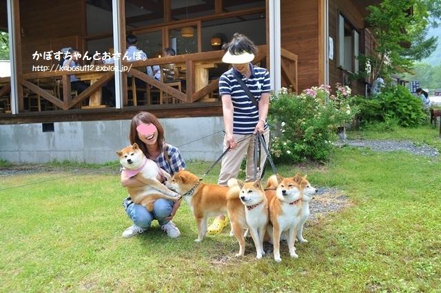 4柴ちゃん、こんにちは! ( 戸隠2015)_a0126590_00332141.jpg