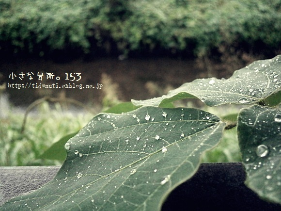 a0339601_19144005.jpg