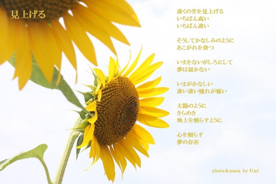 f0351844_19295078.jpg