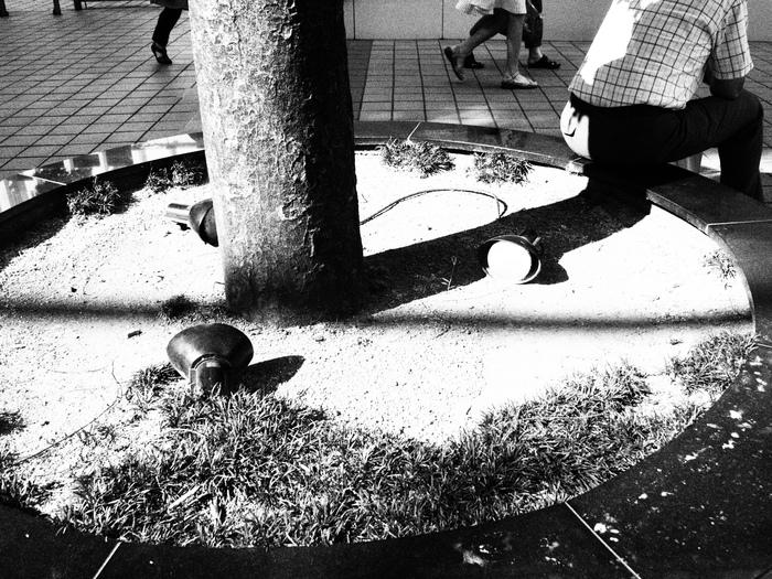 吉祥寺界隈 「間夏」_f0064359_202506.jpg