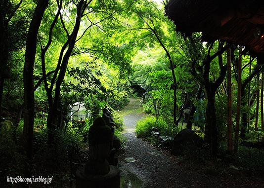 そば処・・・_a0333661_10185367.jpg